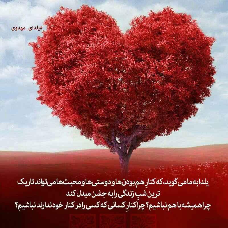 یلدای مهدوی (2)